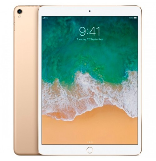 iPad Mini 5 64gb 4G Wifi Mới 100%