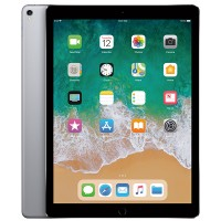 iPad Pro 12.9 inch 256GB new